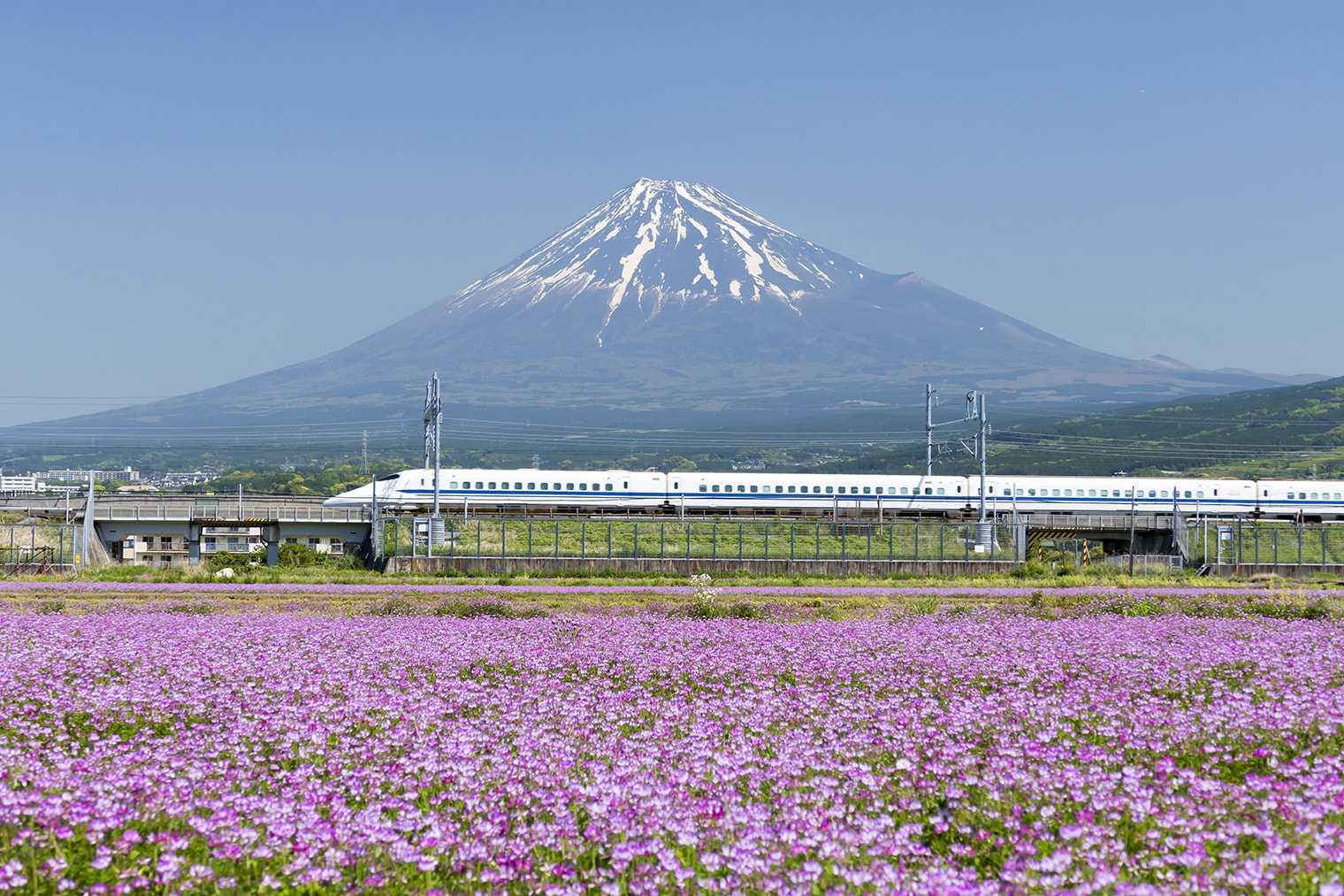 便利な新幹線に宿泊がついてお得!「新幹線パック」の選び方
